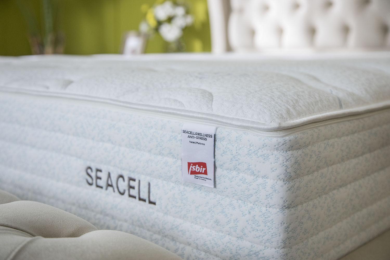 Seacell & Wellness Anti-Stress